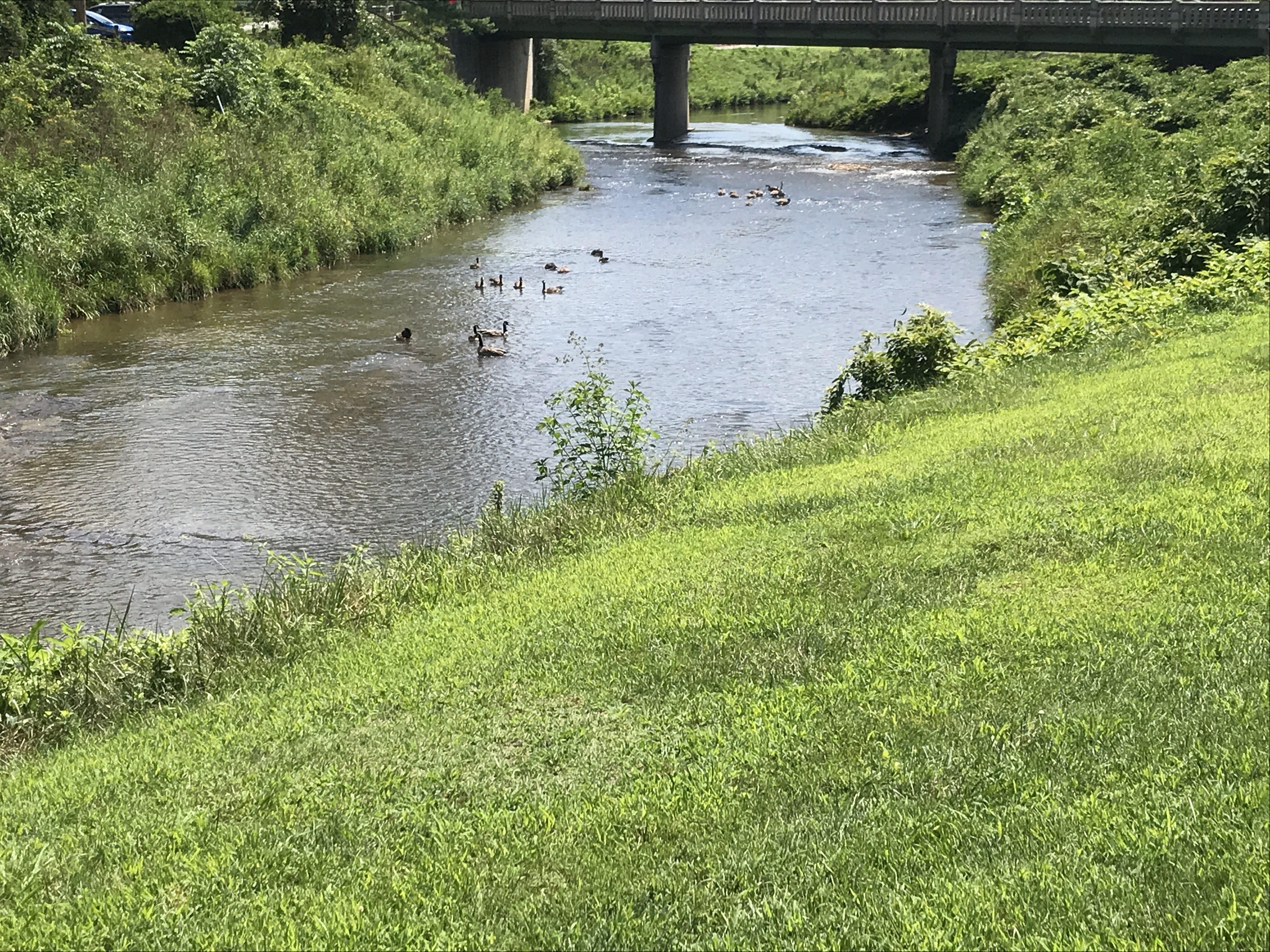 Galax, Virginia: Golf, Fishing, Biking New River Trail