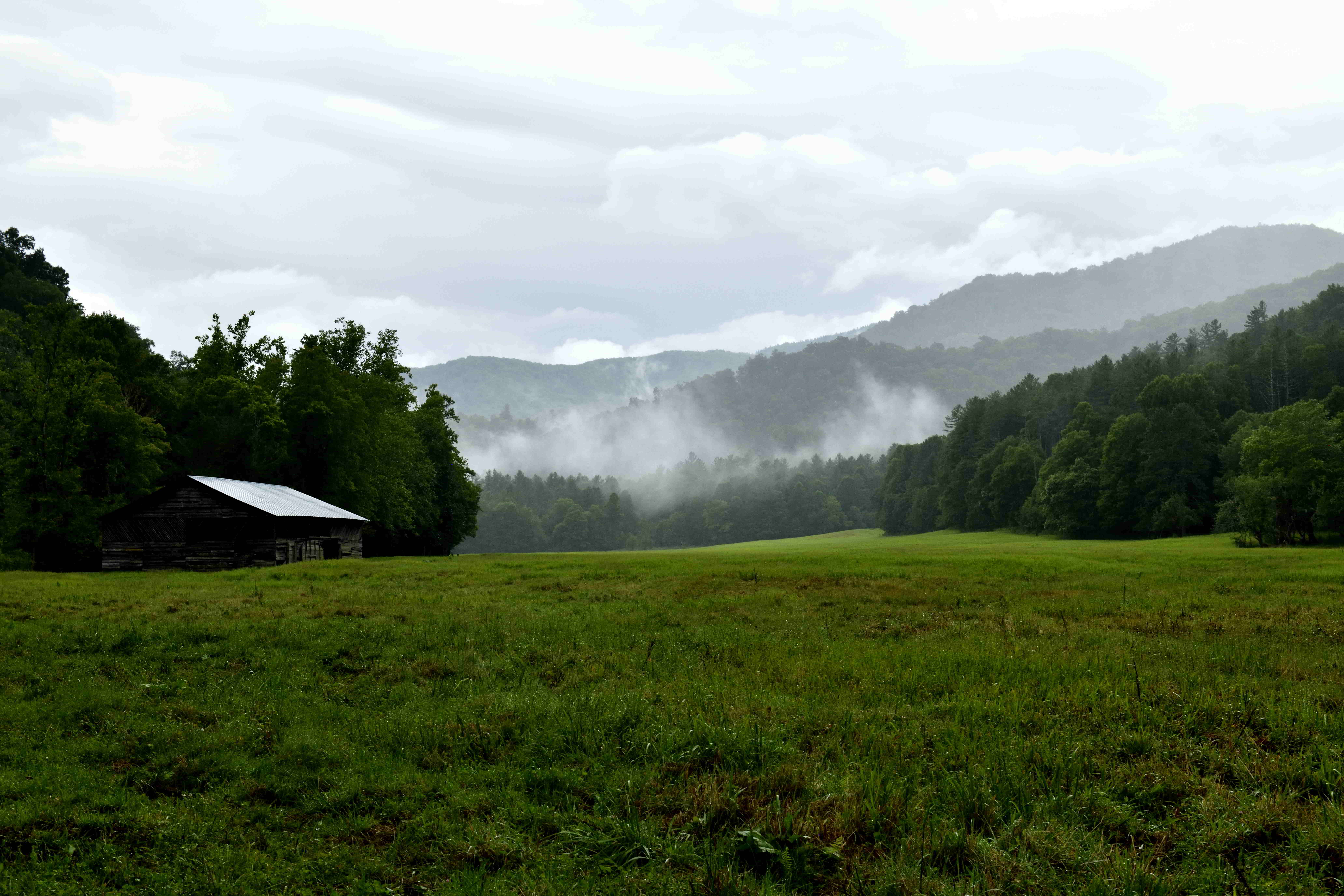 Cataloochee Campground and The Possessed Truck